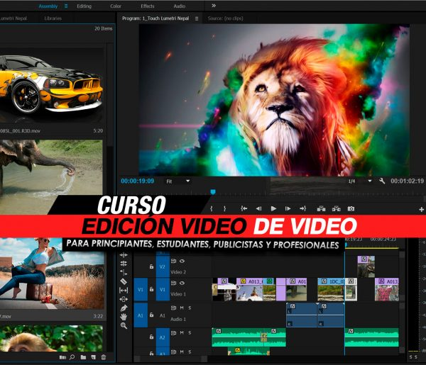 Curso de Edición de Video Digital